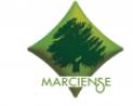Industria Aceitunera Marciense S.A. Chef Marciense