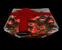 Candycat - Lace Box Hazelnut Bonbons 230g
