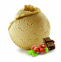 HAZELNUT PRALINE ORGANIC ICE CREAM
