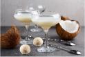 Plant-based Liqueur l Coconut Biscuit