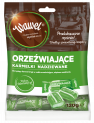 ORZEZWIAJĄCE - filled hard caramels with refreshing mint filling