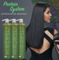 PS Protein System 1L