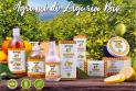 L'Amande - CITRUS FRUITS oF LIGURIA