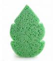 Cellulose leaf sponge