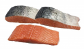 Salmon portions with skin