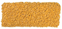 Supersweet corn kernels