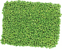 Garden peas, frozen