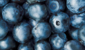 Berries range, Wild berries such as blueberries, cranberries, lingonberries and cloudberries.