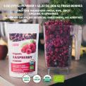 Freeze-Dried Organic Raspberry Powder