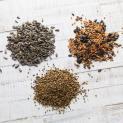 Grain mixtures for wild birds and exotic birds