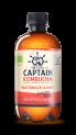 The GUTsy Captain Kombucha Core Watermelon & Mint