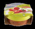 veggie Bio_Bruschetta ai pomodori