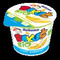 Yogurt BIO 100g