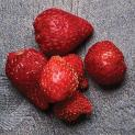 Vacuum dried Strawberries