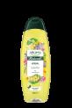AROMA NATURAL shampoos