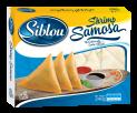 Shrimp Samosa